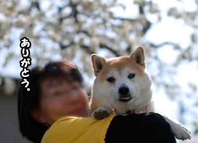 10日ブログ11.jpg