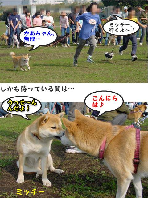 10日ブログ13.jpg