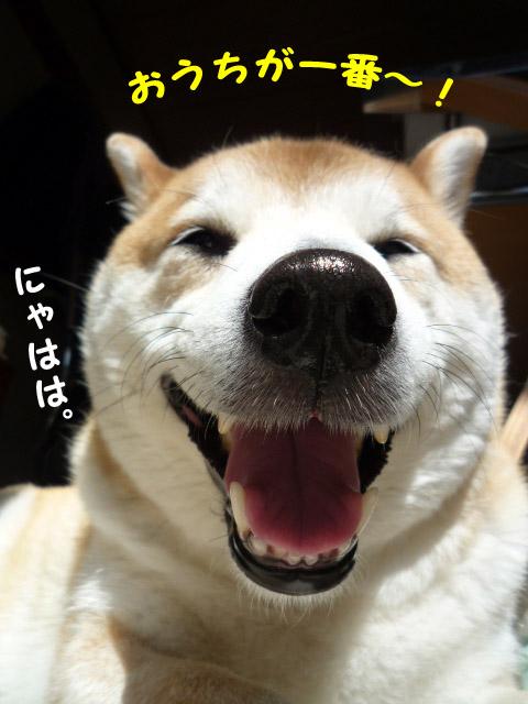 10日ブログ15.jpg