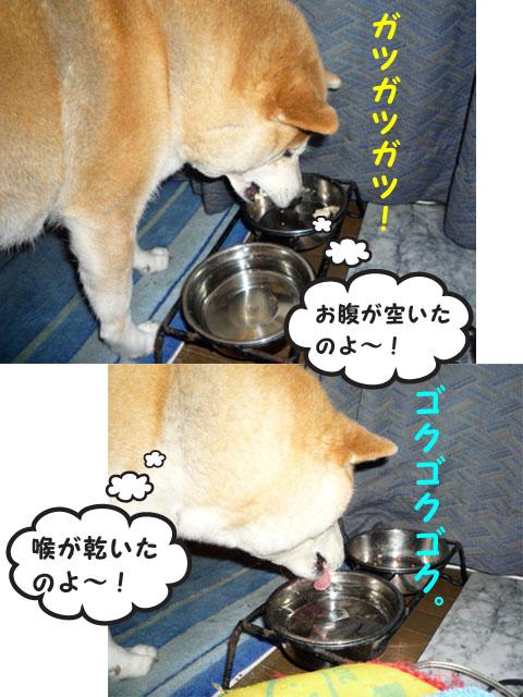 10日ブログ2.jpg