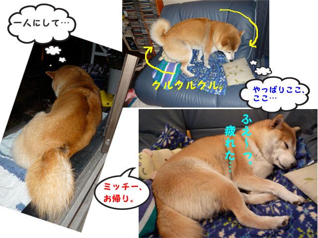 10日ブログ3.jpg