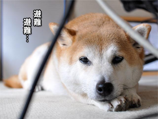 14日ブログ1.jpg