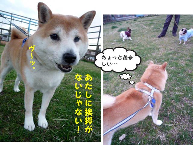 16日ブログ10.jpg