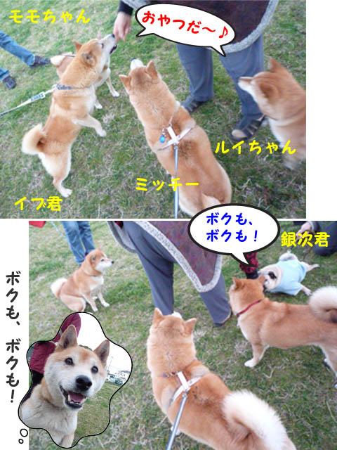 16日ブログ13.jpg