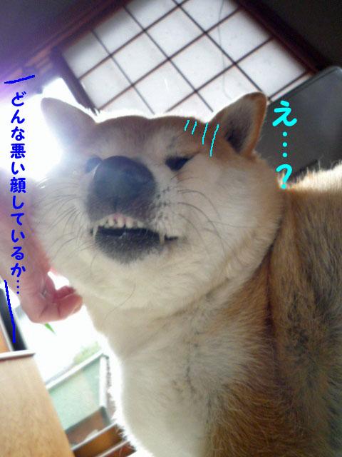 16日ブログ6.jpg