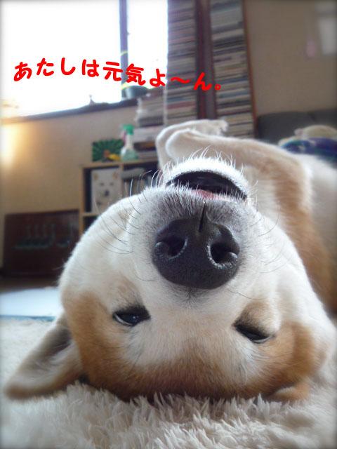 18日ブログ1.jpg