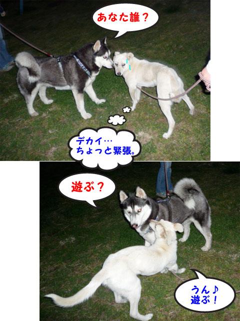 18日ブログ13.jpg