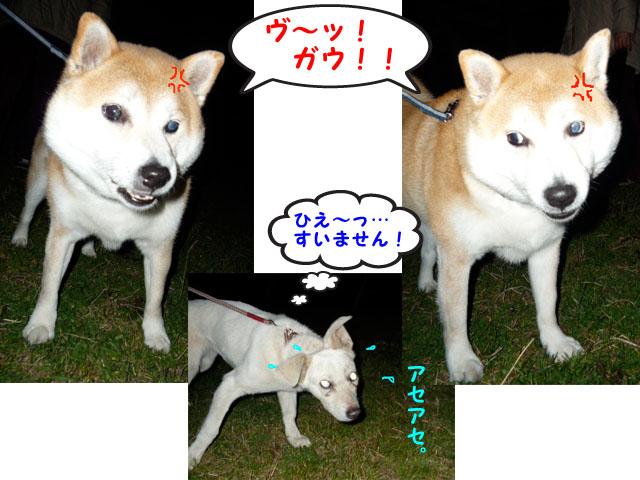18日ブログ14.jpg