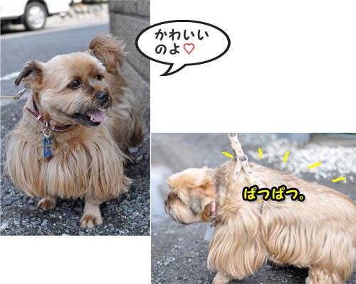 22日ブログ14.jpg