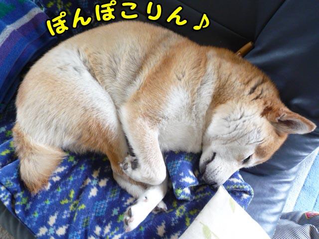 25日ブログ14.jpg
