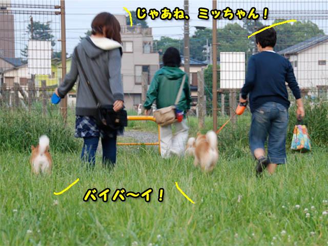 27日ブログ20.jpg