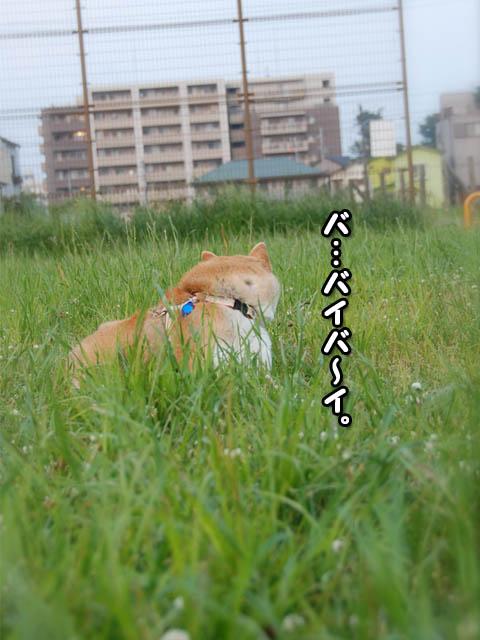 27日ブログ21.jpg