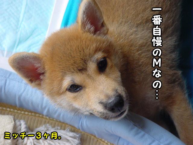 27日ブログ6.jpg