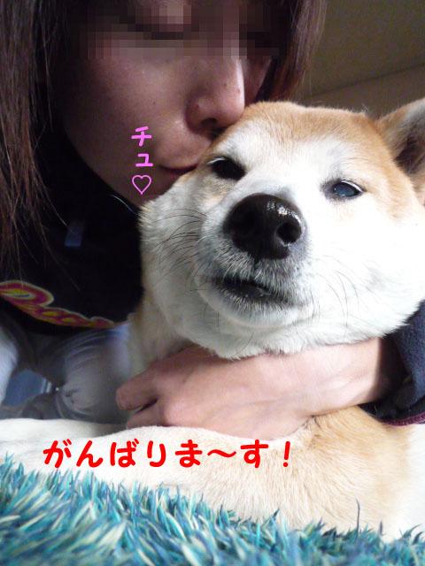 28日ブログ17.jpg