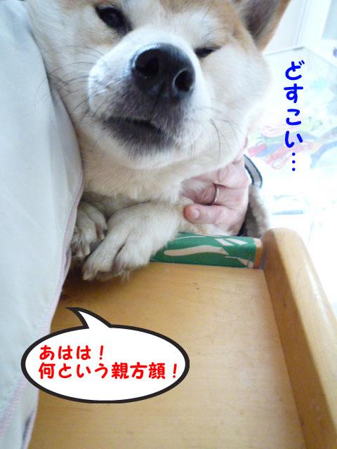 29日朝12.jpg