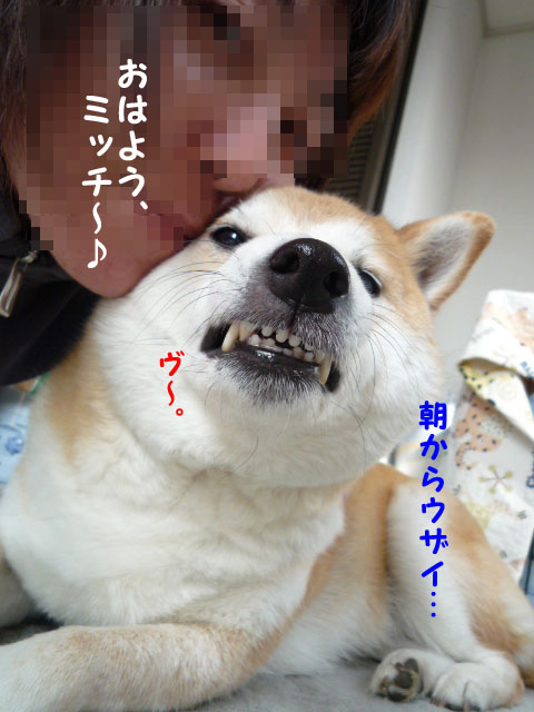 29日朝5.jpg