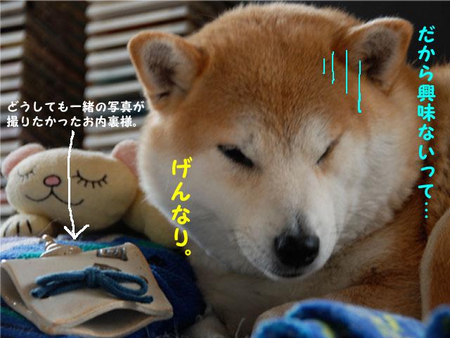 3日ブログ5.jpg
