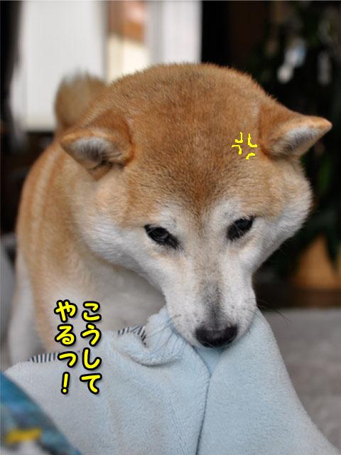 7日ブログ3.jpg