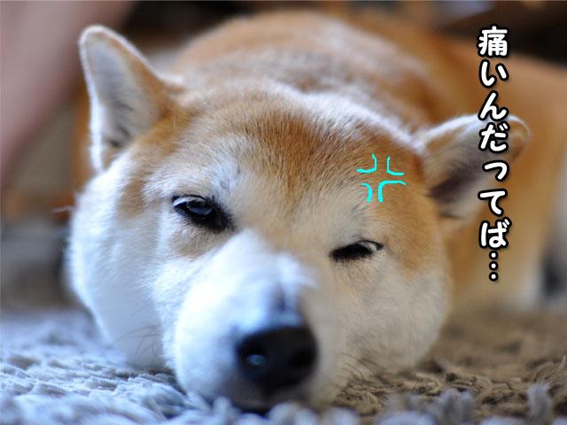 8日ブログ10.jpg