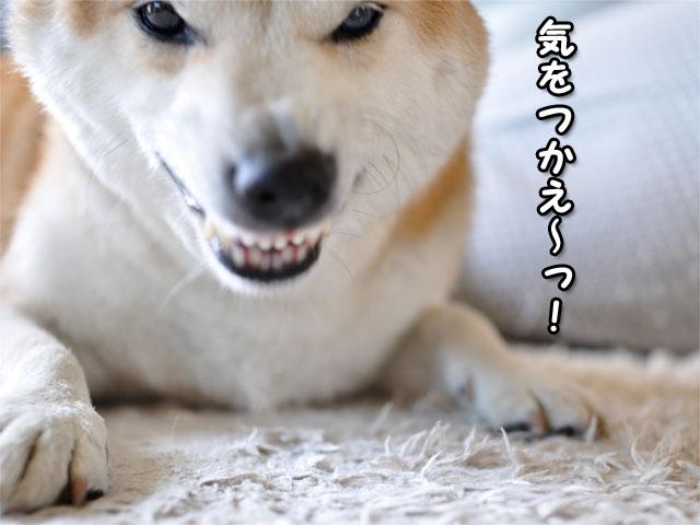 8日ブログ12.jpg