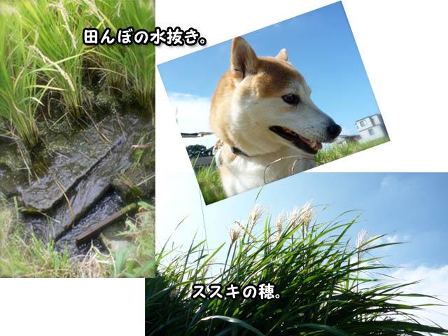 8日ブログ3.jpg
