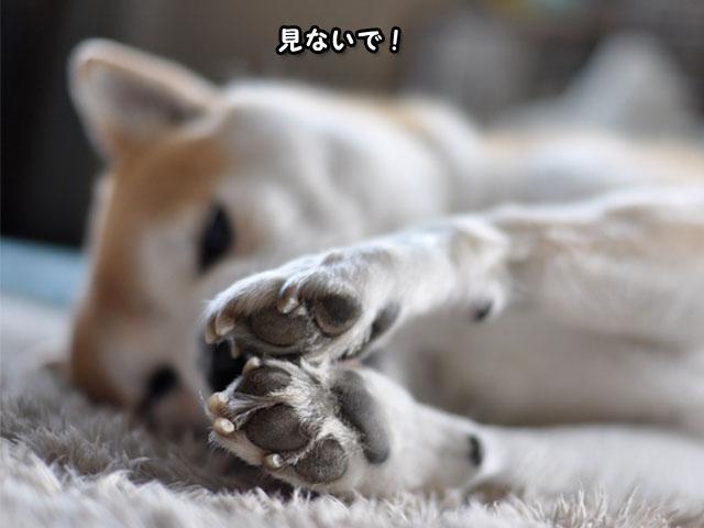 8日ブログ6.jpg