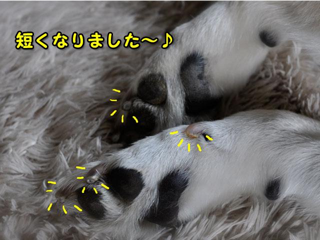 8日ブログ9.jpg