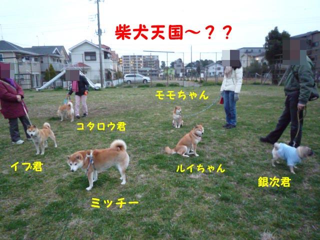 9日ブログ15.jpg