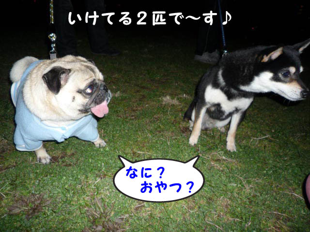 9日ブログ17.jpg