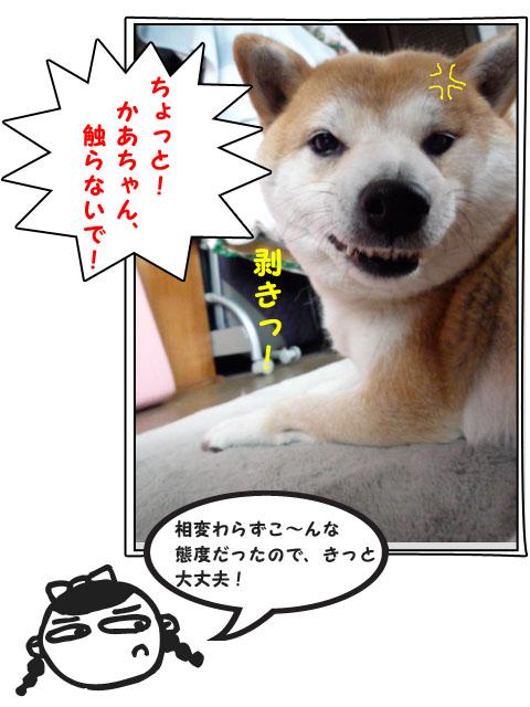 9日ブログ18.jpg