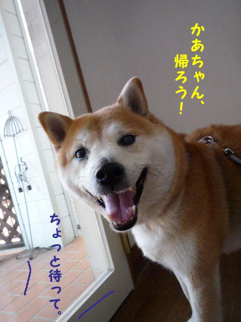 9日ブログ9.jpg