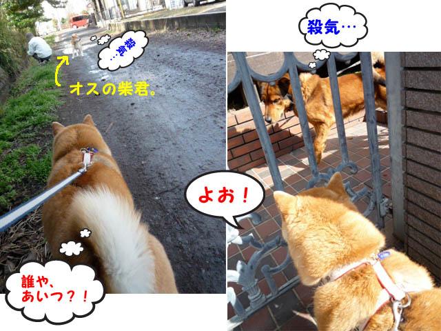 10日ブログ14.jpg