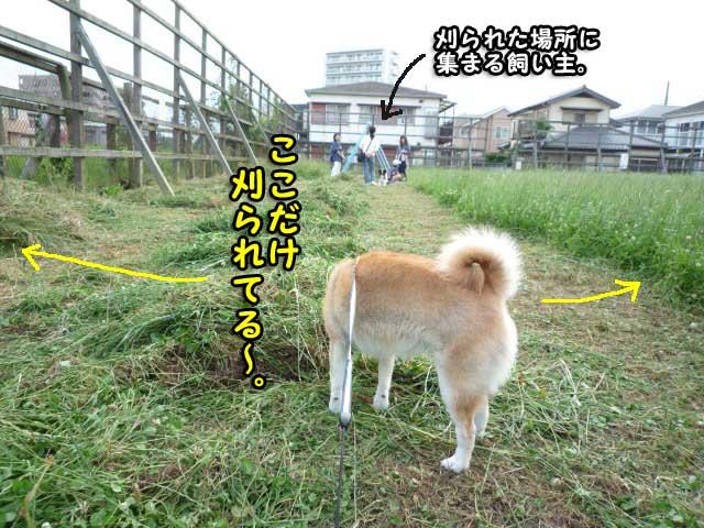18日ブログ4.jpg