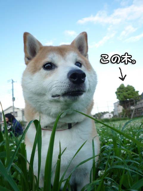 18日ブログ8.jpg