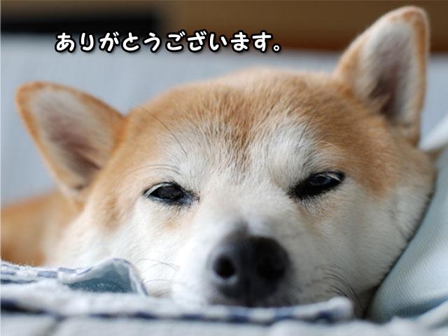 19日ブログ1.jpg