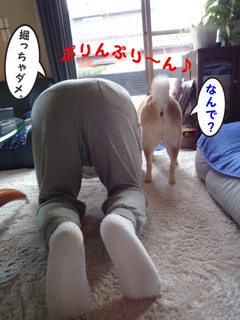 28日ブログ16.jpg