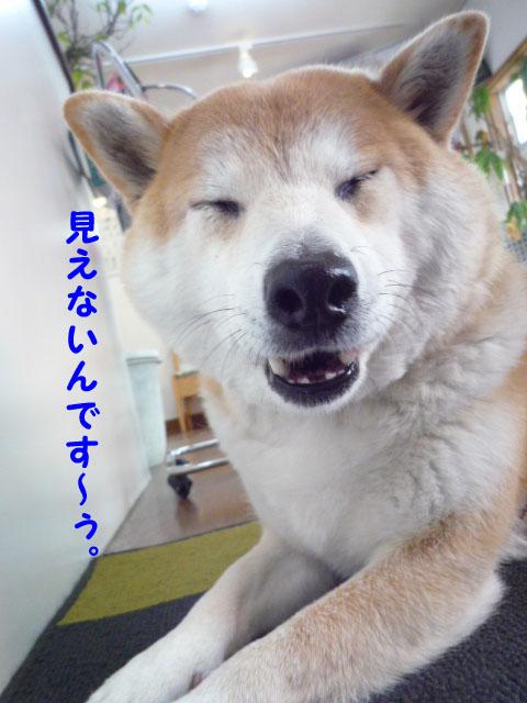28日ブログ8.jpg