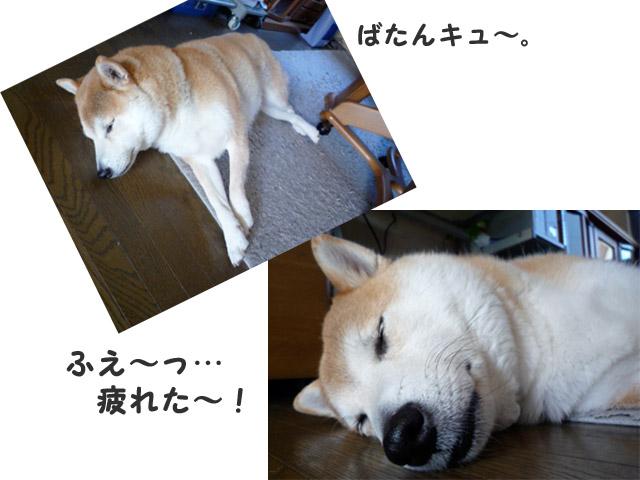 3日ブログ15.jpg