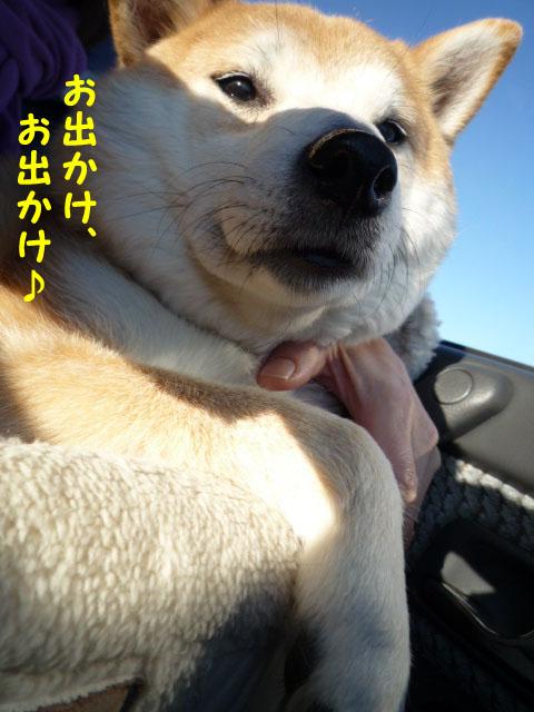 3日ブログ6.jpg
