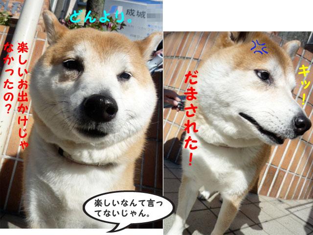 3日ブログ8.jpg