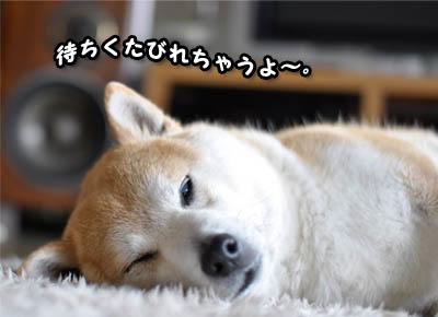 7日ブログ17.jpg