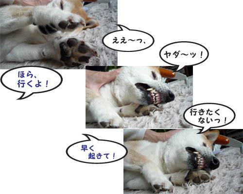 7日ブログ6.jpg