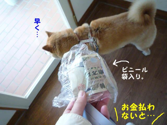 9日ブログ10.jpg
