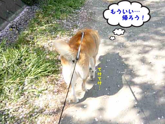 9日ブログ12.jpg