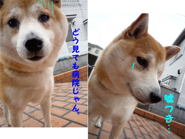 9日ブログ8.jpg
